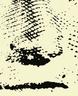 image-free-vector-freebie-george-washington
