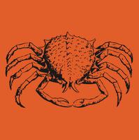 image-free-vector-freebie-crab