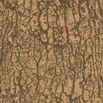 image-free-vector-freebie-bark-wood-texture