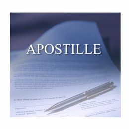 This Nevada Apostille will Certify documents for use in another country.
