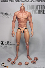 ZC Toys 1/6 Scale  Ver3.0 Muscular Seamless Arm Nude action figure body