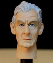 1/6 Action Figure Head Play Head Sculpt-Ian McKellen, Magneto from X-Men