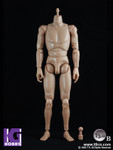 "Toys City TTL 1/6 Scale 12"" Caucasian Male Nude figure Body T3.0 Brown skin tone"