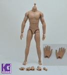 MUSCULAR CLUB 1/6 Muscular Nude Caucasian figure Body