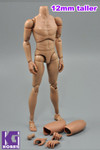 Custom 1/6 Nude Action figure Body-Taller version with Narrow Shoulder with Neck