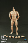 COOMODEL 1/6 Male Muscle Nude Action Figure Body-Standard Height