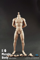 COOMODEL 1/6 Male Muscle Nude Action Figure Body-Extra Height