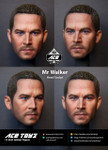 Ace Toyz ATH-003 Mr Walker 1/6 figure head sculpt