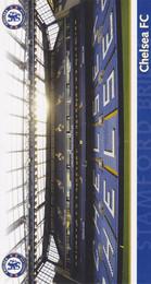 Chelsea F.C. - Stamford Bridge Birthday Card