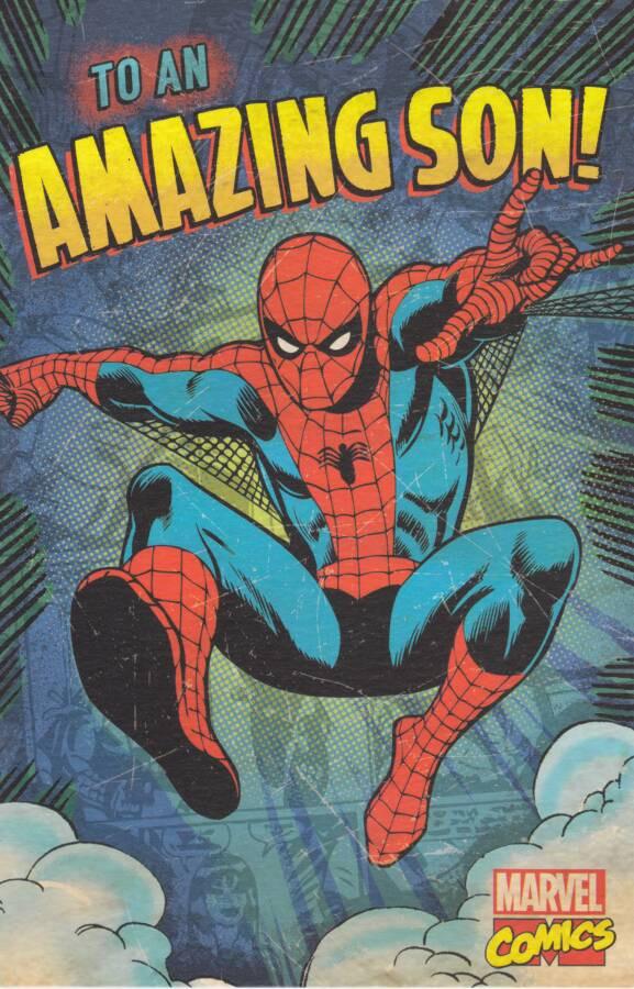 Marvel spiderman son birthday card cardspark marvel spiderman sons birthday card loading zoom bookmarktalkfo Gallery