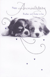 GI Brother And Sister In Law Puppy Anniversary Card