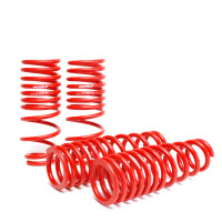 Skunk2 Lowering Springs 2002-04 Rsx