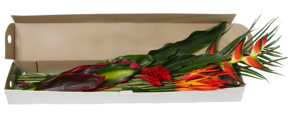 Florist mixed box