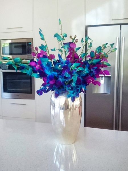 An example arrangement of our Blue Orchid range
