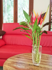 Compact, pollen free flowers perfect for the home or office