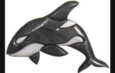 FREE WILLY INTARSIA PATTERN