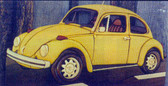 YELLOW BUG INTARSIA PATTERN