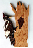 IVORY BILLED WOODPECKER INTARSIA PATTERN