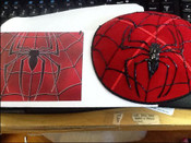 Hand-Painted Spiderweb