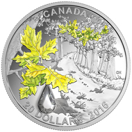 2016 $20 FINE SILVER COIN JEWEL OF THE RAIN: BIGLEAF MAPLE