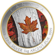 2016 $250 FINE SILVER COIN MAPLE LEAF FOREVER