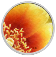 2013 25-CENT COLOURED COIN-MAGNIFIED BEAUTY: THE EASTERN PRICKLY PEAR CACTUS