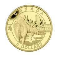 2014 $5 PURE GOLD COIN O CANADA - MOOSE