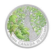 2014 $20 FINE SILVER COIN MAPLE CANOPY - SPRING SPLENDOUR