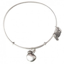 Alex and Ani Apple of Abundance Russian Silver