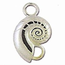 Convertible Nautilus Shell Clasp