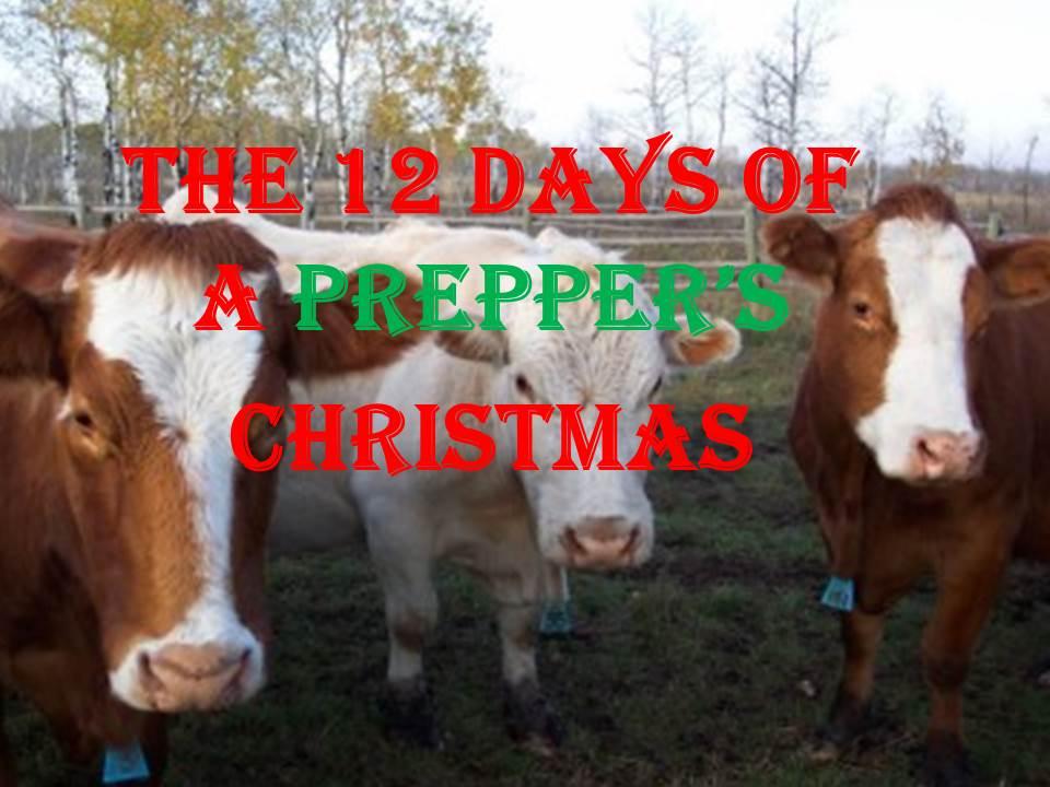 The 12 Days of a Prepper's Christmas - DBA- Gear Up Center ...