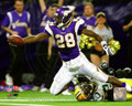 Adrian Peterson NFL Action Reception Photo