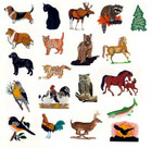 Singer Embroidery Card Real Animals #5003