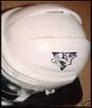 Nashville Predators Mini NHL Replica Hockey Helmet