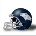 Nevada-Reno Wolfpack Mini Authentic Schutt Helmet