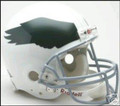 Philadelphia Eagles 1969-73 Throwback Full Size Authentic Helmet