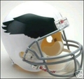 Philadelphia Eagles 1969-73 Throwback Full Size Replica Helmet