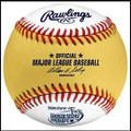 Rawlings 2010 All Star Game In Anaheim Gold HR Derby Official Baseball
