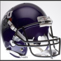 TCU Texas Christian 2010 Rose Bowl Chapions Full Size Replica Helmet