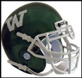 Wagner Seahawks Mini Authentic Schutt Helmet