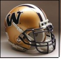 Washington Huskies Full Size Authentic Schutt Helmet