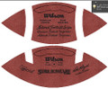 Wilson Official Super Bowl 8 Football Vikings vs Dolphins