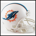 Miami Dolphins 2013 Mini Replica Helmet