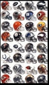 Complete Riddell NFL 32pc Full Size Replica Helmet Set