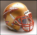 Florida State Seminoles Full Size Authentic Schutt Helmet
