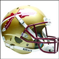 Florida State Seminoles Full XP Replica Football Helmet Schutt
