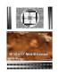 3D Fake Sonogram 10 to 17 Weeks