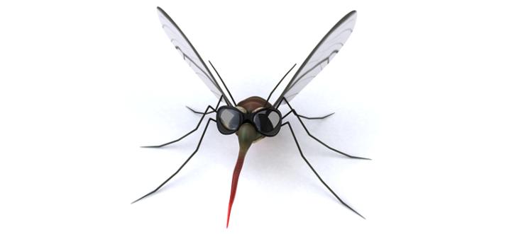 insectbites.jpg