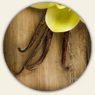 All Natural Aged Tahitian Vanilla Balsamic Vinegar Condimento