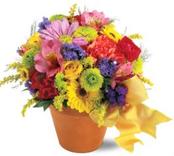 Fresh Blossom Potpourri Gift
